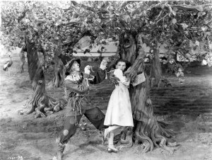 wizard of oz tree